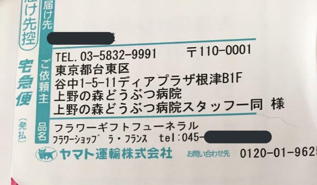 f:id:TokuheiKumagai:20200312225731j:image