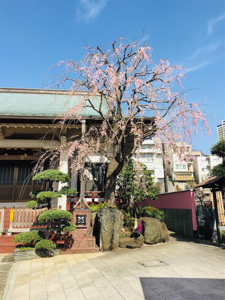 f:id:TokuheiKumagai:20200321193259j:image