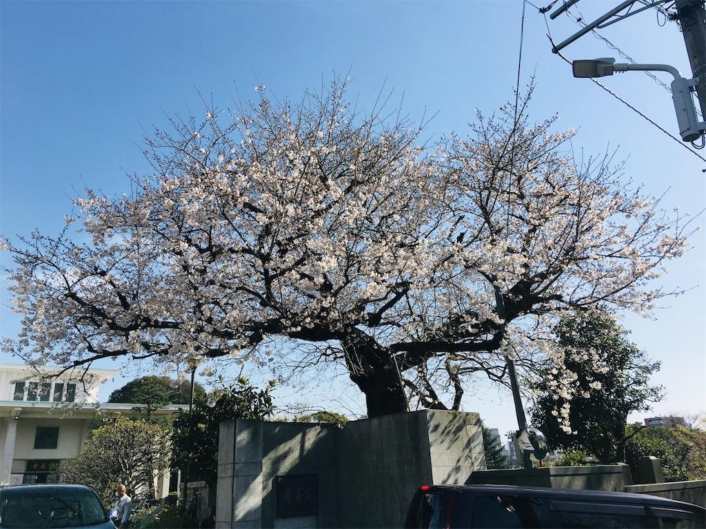 f:id:TokuheiKumagai:20200321193313j:image