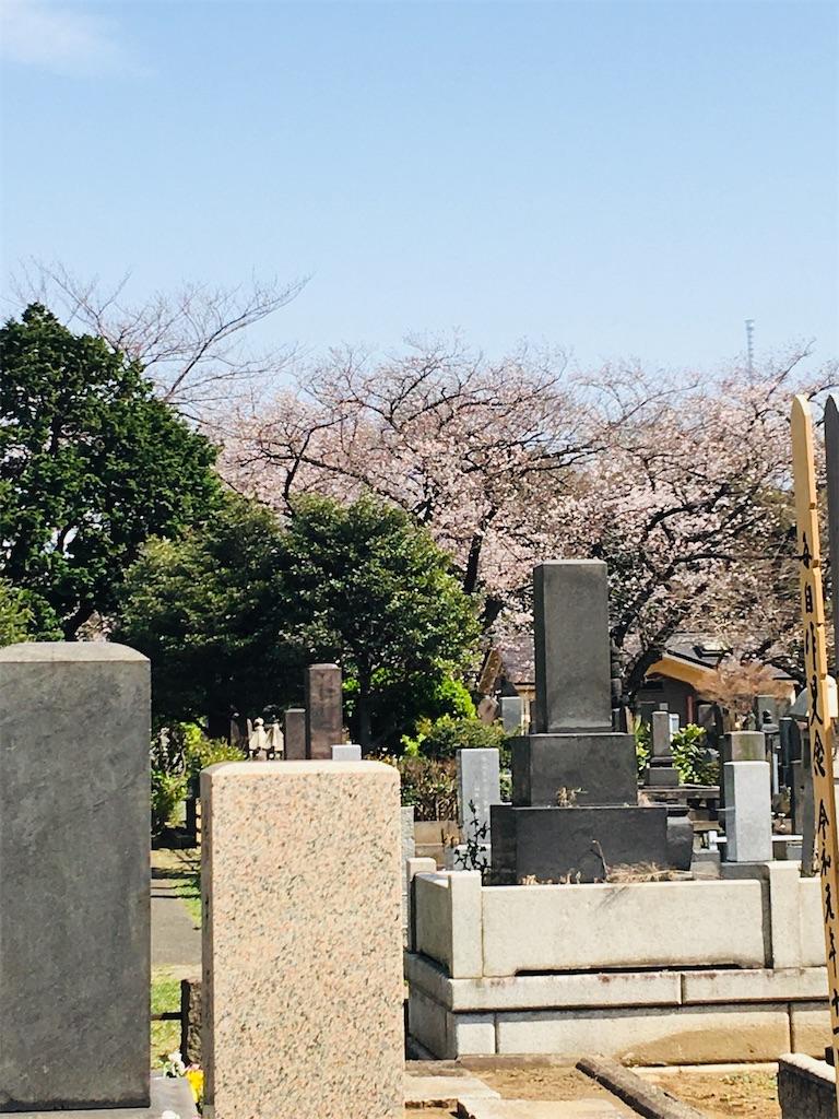 f:id:TokuheiKumagai:20200321193329j:image