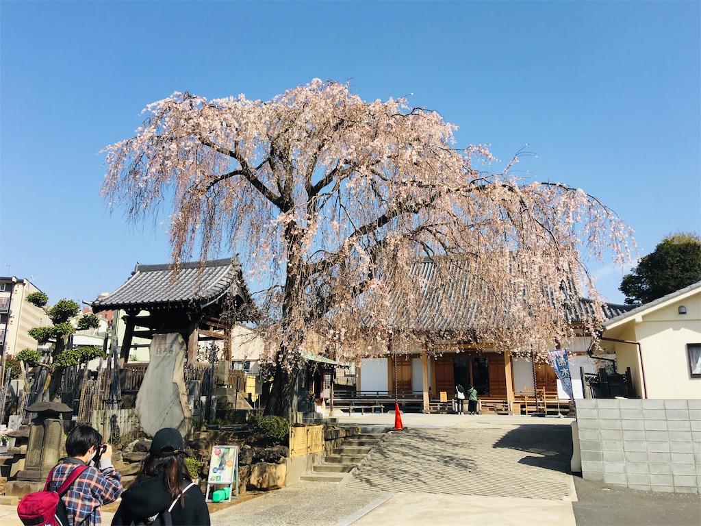 f:id:TokuheiKumagai:20200321193358j:image