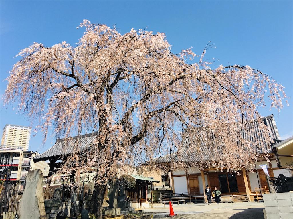 f:id:TokuheiKumagai:20200321193444j:image