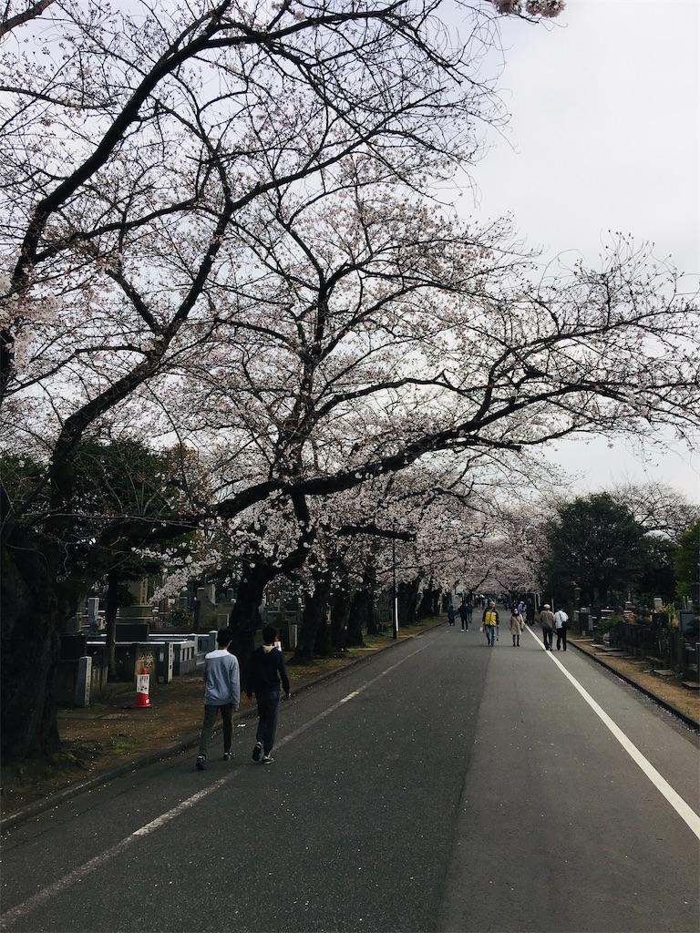 f:id:TokuheiKumagai:20200323202616j:image