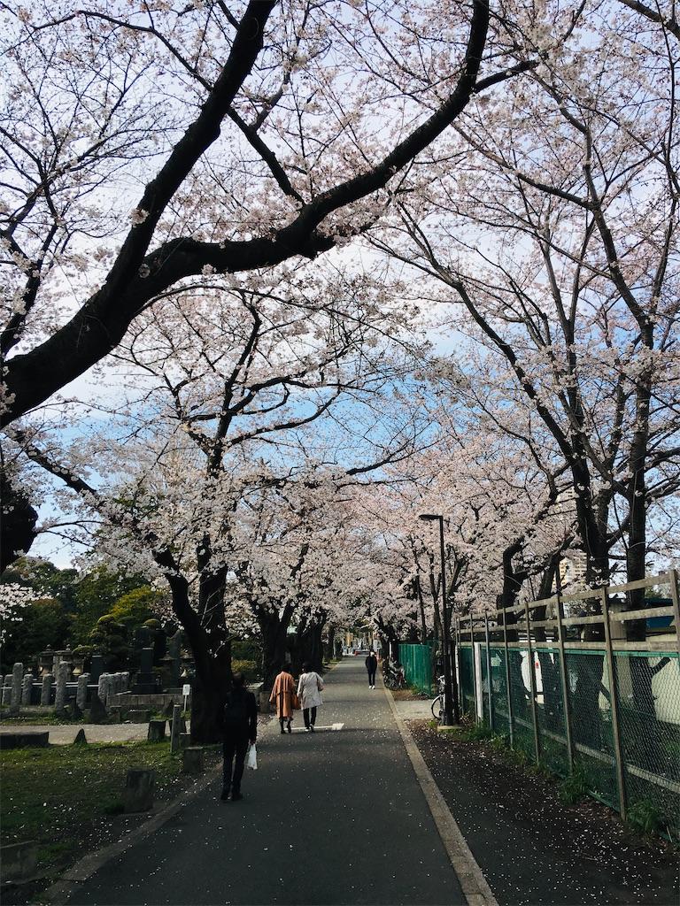 f:id:TokuheiKumagai:20200323202621j:image