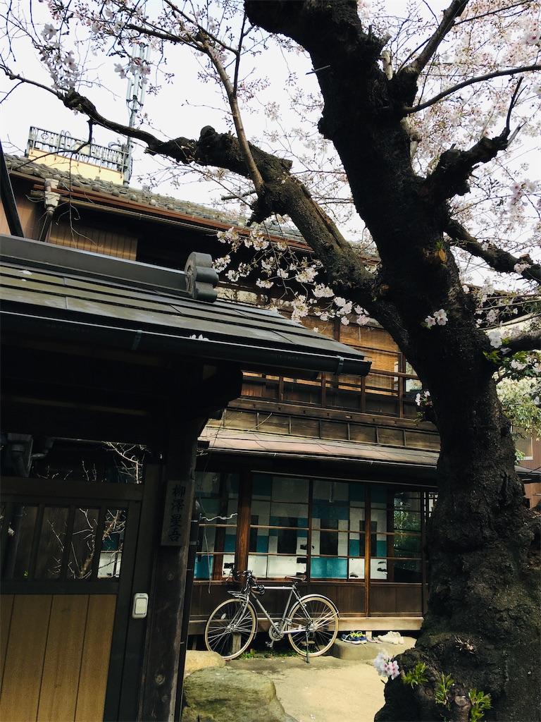 f:id:TokuheiKumagai:20200323202626j:image
