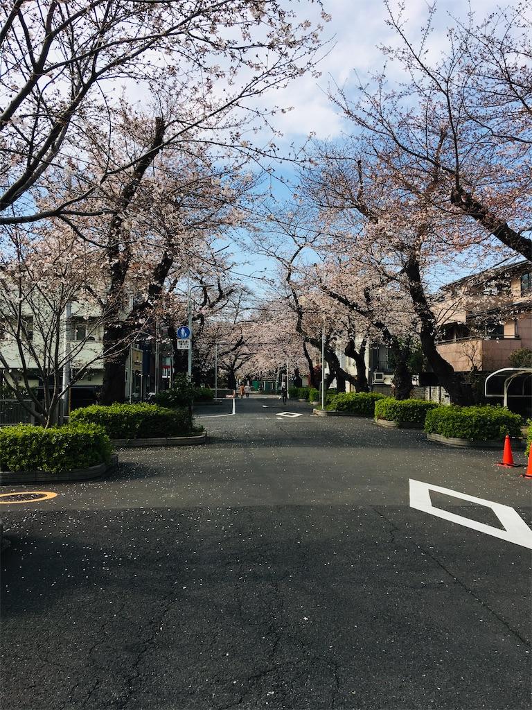 f:id:TokuheiKumagai:20200323202658j:image