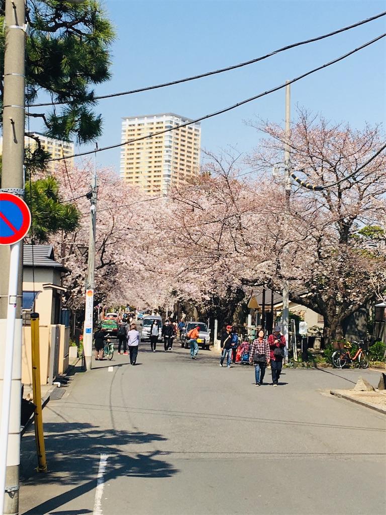 f:id:TokuheiKumagai:20200326205729j:image
