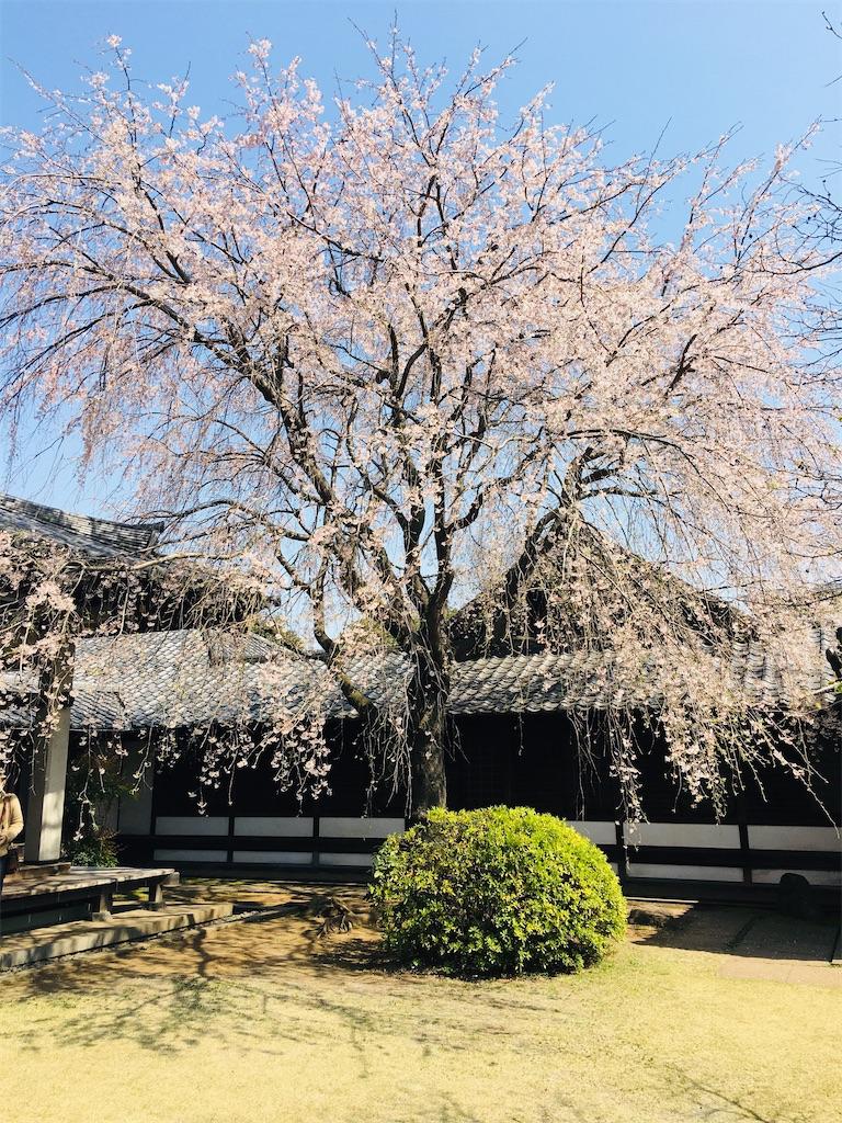 f:id:TokuheiKumagai:20200326205736j:image