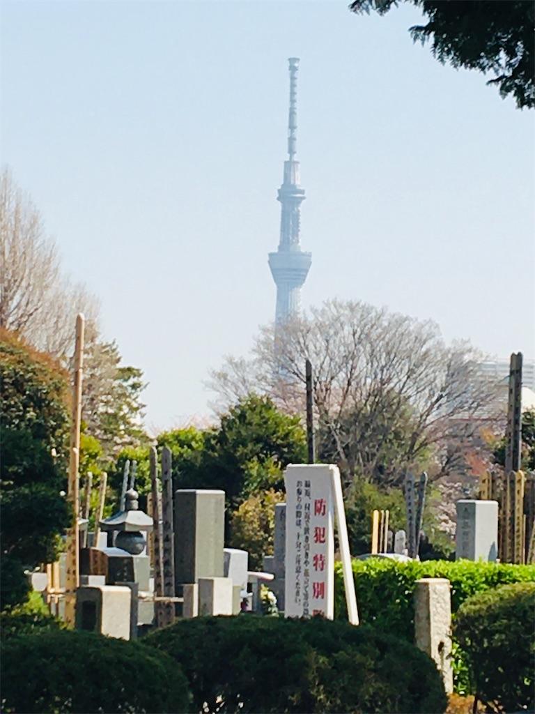 f:id:TokuheiKumagai:20200326205744j:image