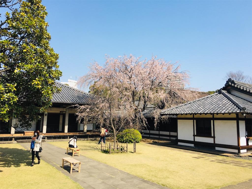 f:id:TokuheiKumagai:20200326205818j:image