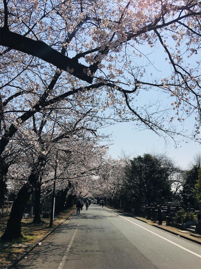 f:id:TokuheiKumagai:20200326205823j:image