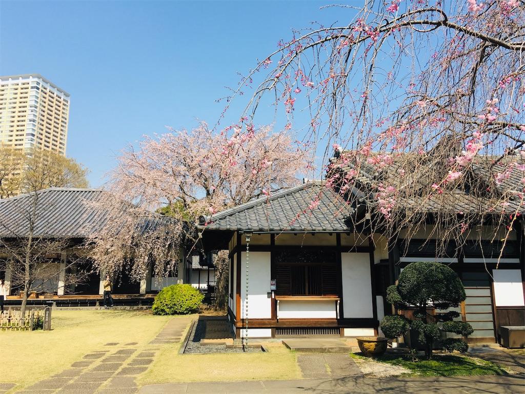 f:id:TokuheiKumagai:20200326205843j:image