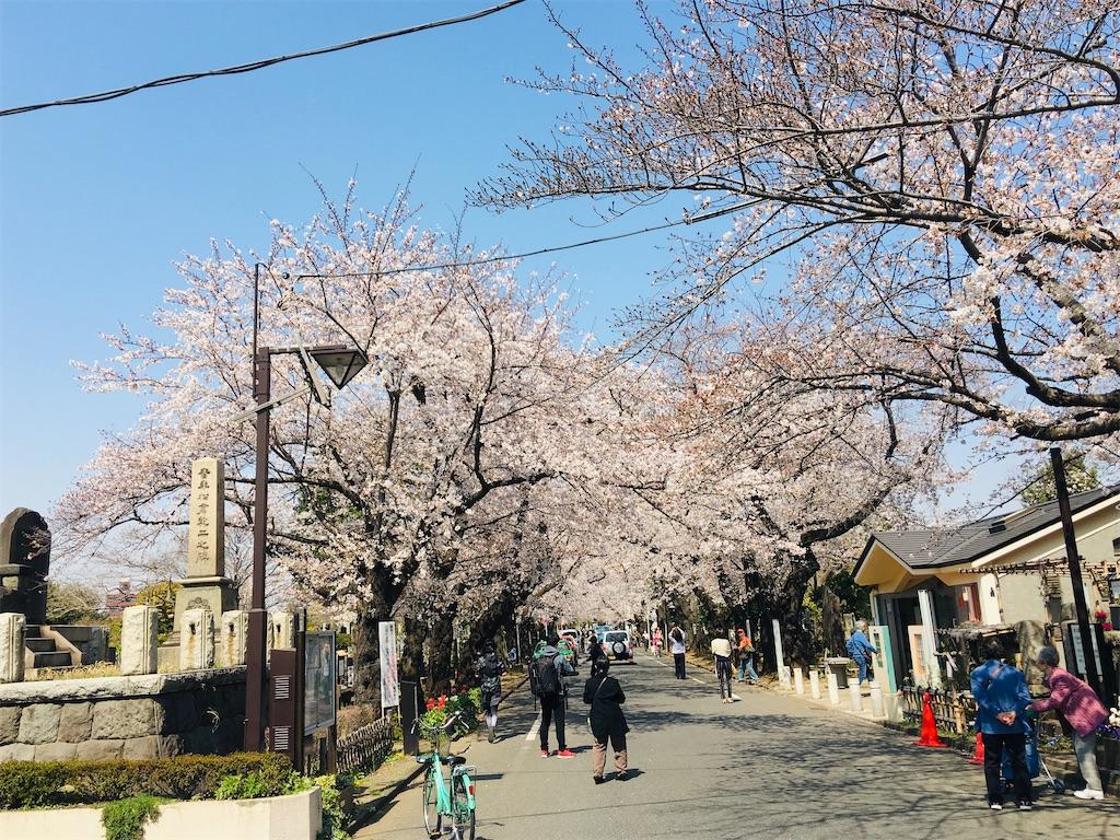 f:id:TokuheiKumagai:20200326205853j:image
