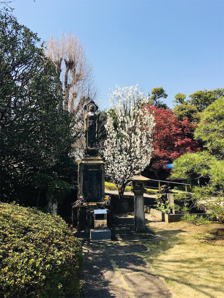 f:id:TokuheiKumagai:20200326205913j:image