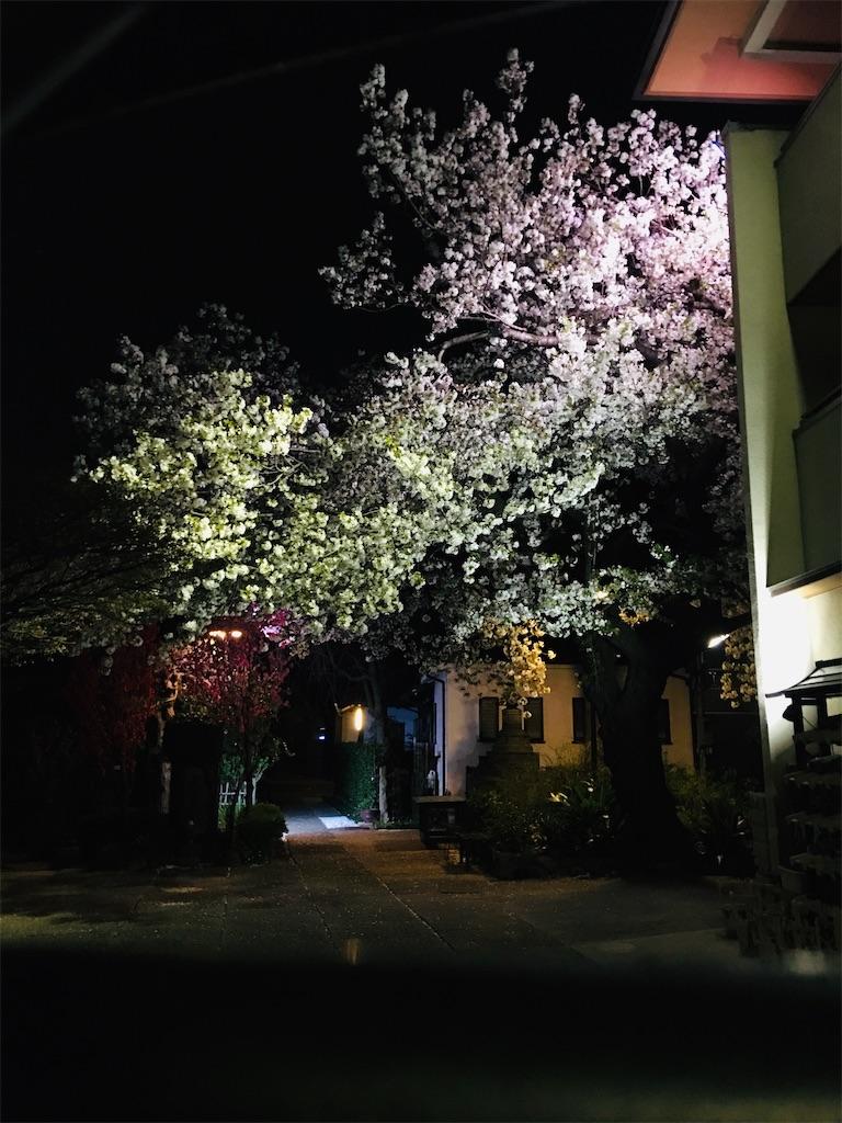 f:id:TokuheiKumagai:20200326213937j:image