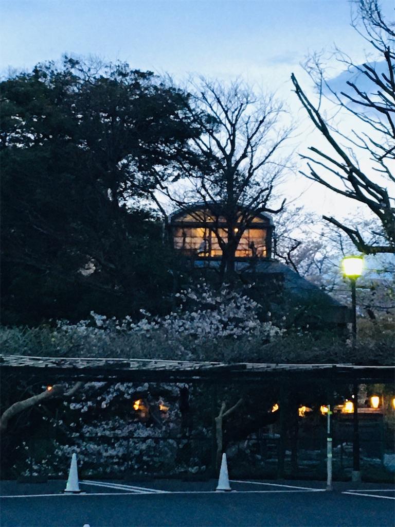 f:id:TokuheiKumagai:20200327215807j:image