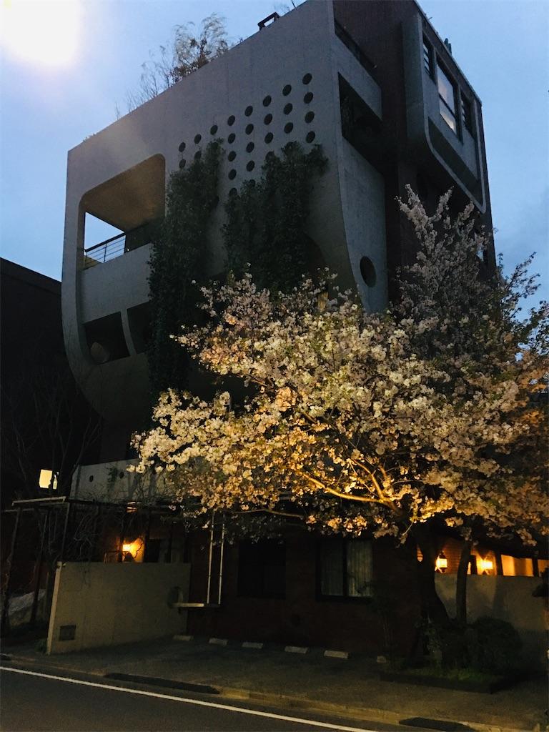 f:id:TokuheiKumagai:20200327215811j:image