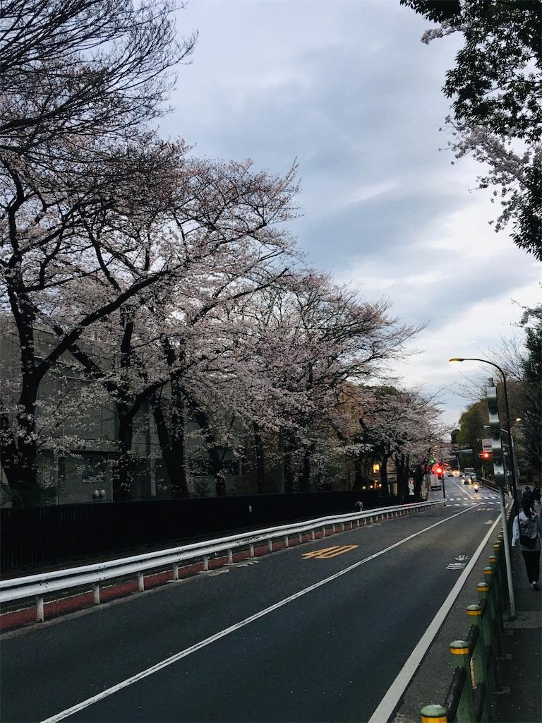 f:id:TokuheiKumagai:20200327215823j:image