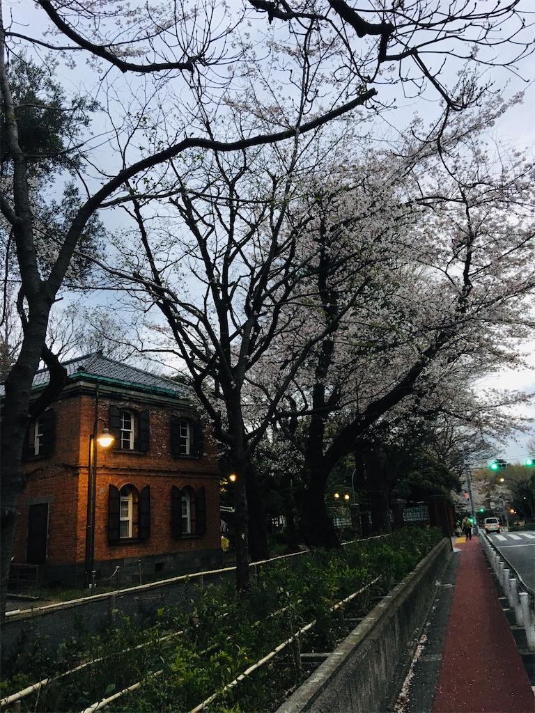 f:id:TokuheiKumagai:20200327215848j:image