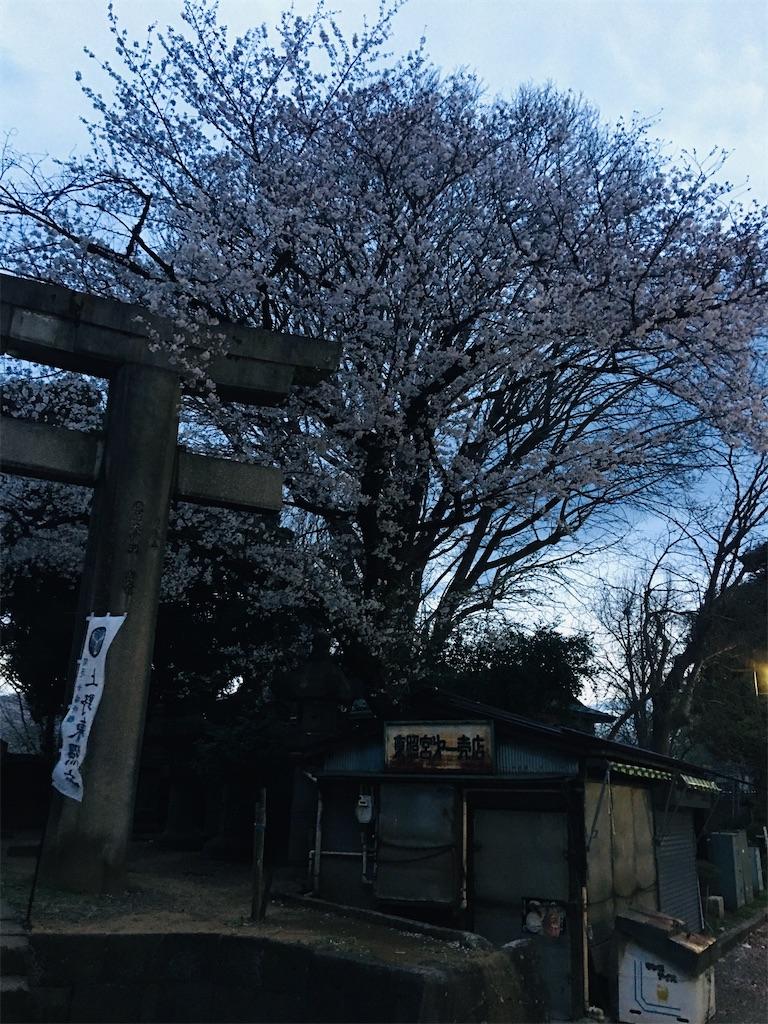 f:id:TokuheiKumagai:20200327215905j:image