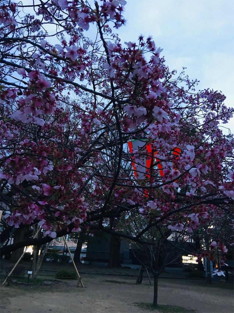 f:id:TokuheiKumagai:20200327220132j:image