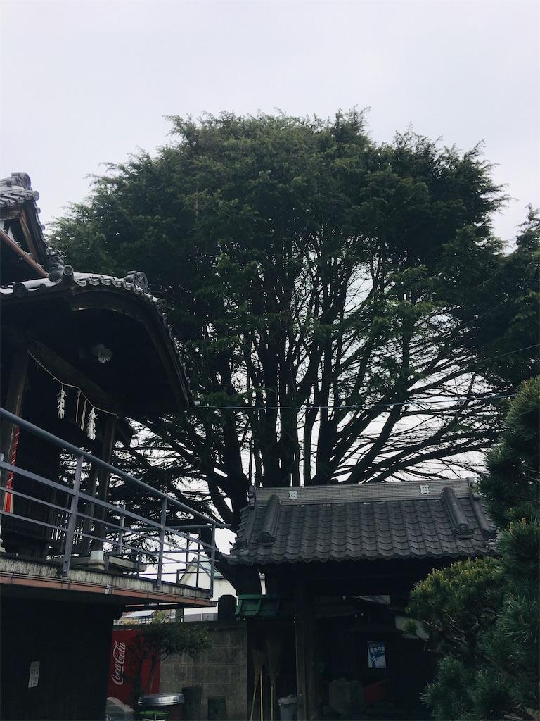 f:id:TokuheiKumagai:20200401004943j:image