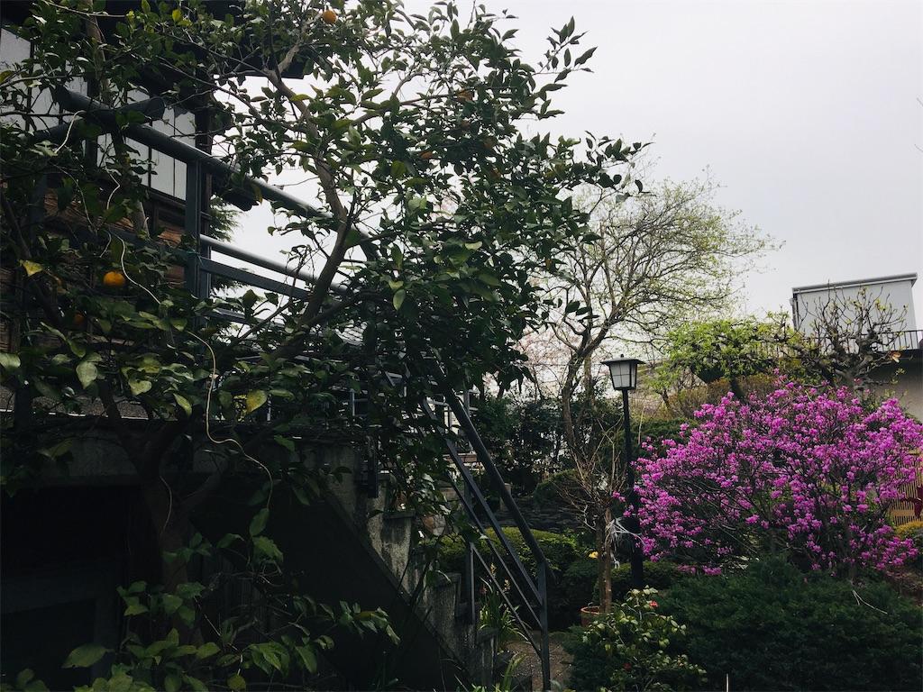 f:id:TokuheiKumagai:20200401005017j:image