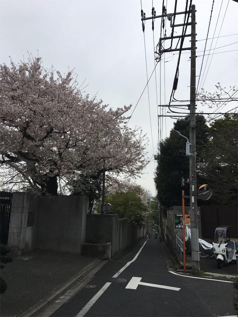 f:id:TokuheiKumagai:20200401005037j:image