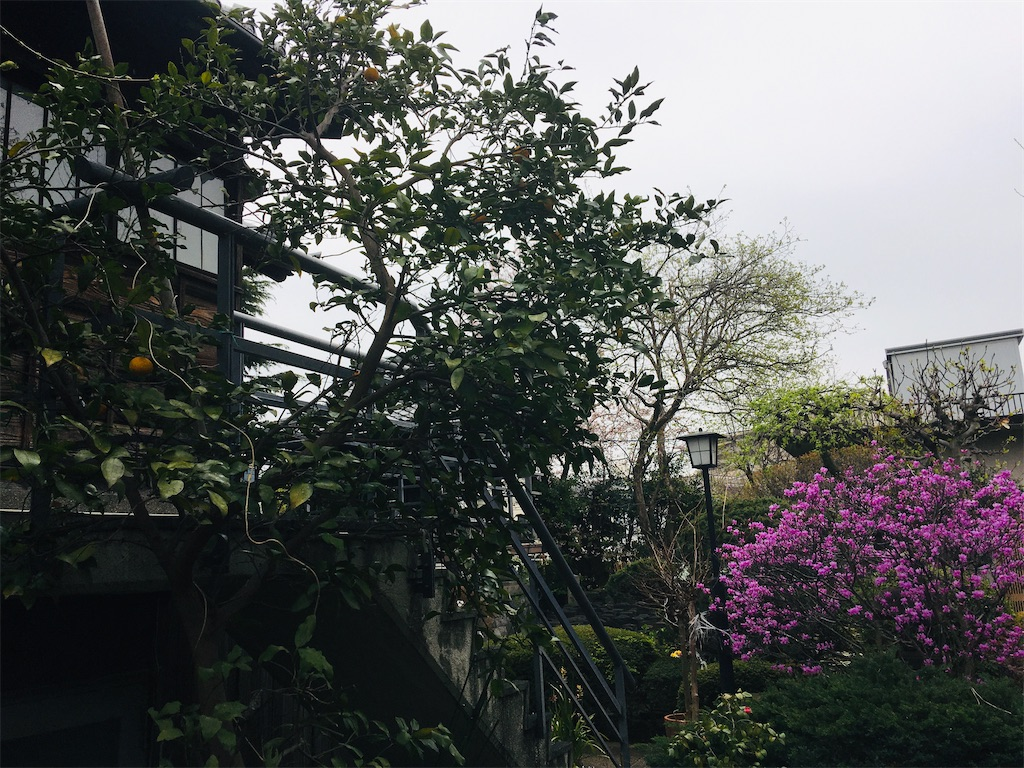 f:id:TokuheiKumagai:20200401005044j:image