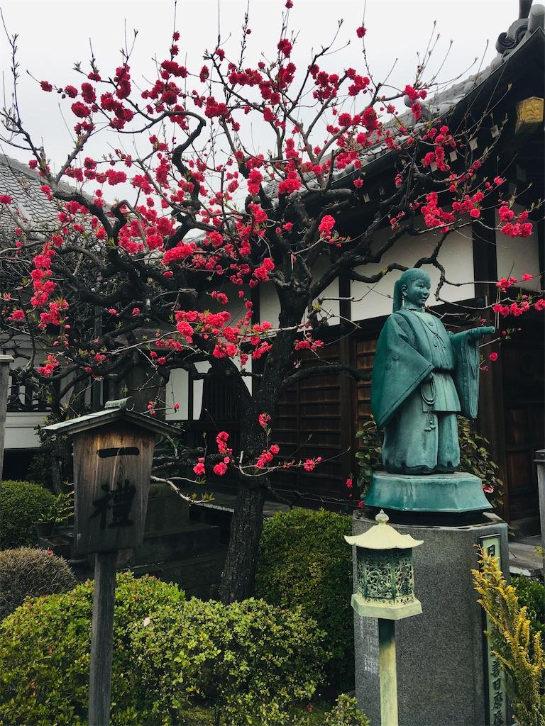 f:id:TokuheiKumagai:20200401005053j:image