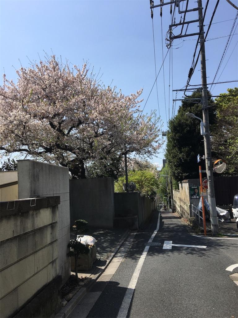 f:id:TokuheiKumagai:20200402151817j:image