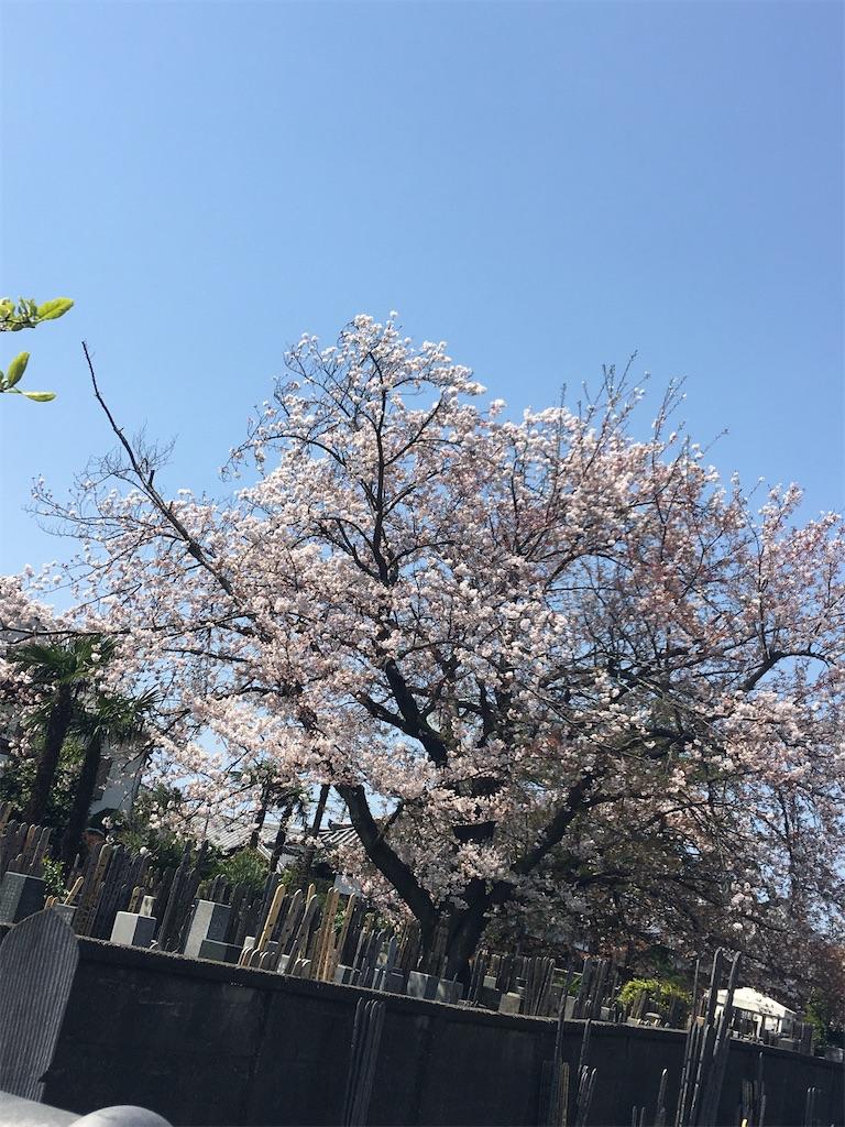 f:id:TokuheiKumagai:20200402151840j:image