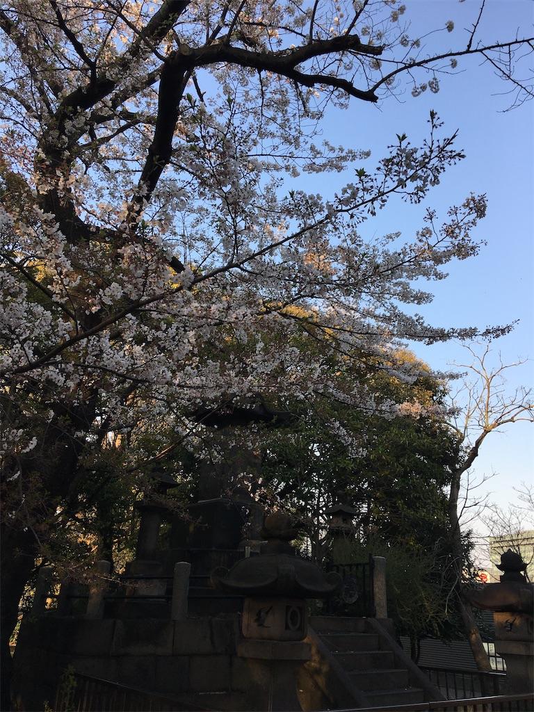 f:id:TokuheiKumagai:20200402193706j:image