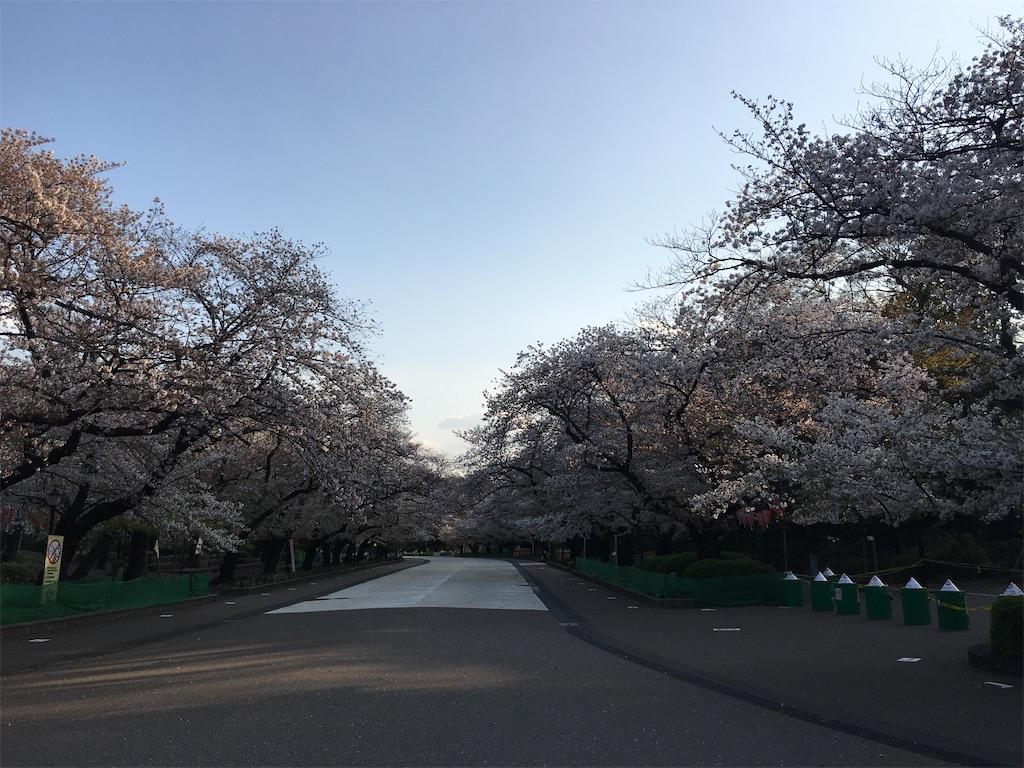 f:id:TokuheiKumagai:20200402193721j:image