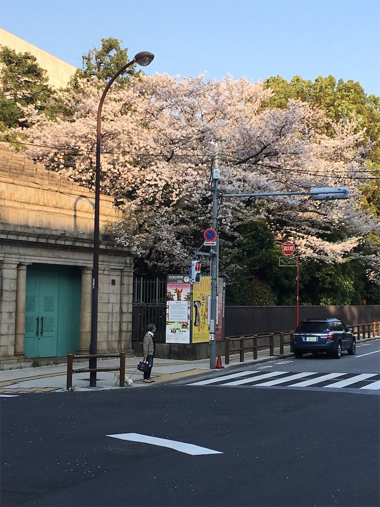 f:id:TokuheiKumagai:20200402193725j:image