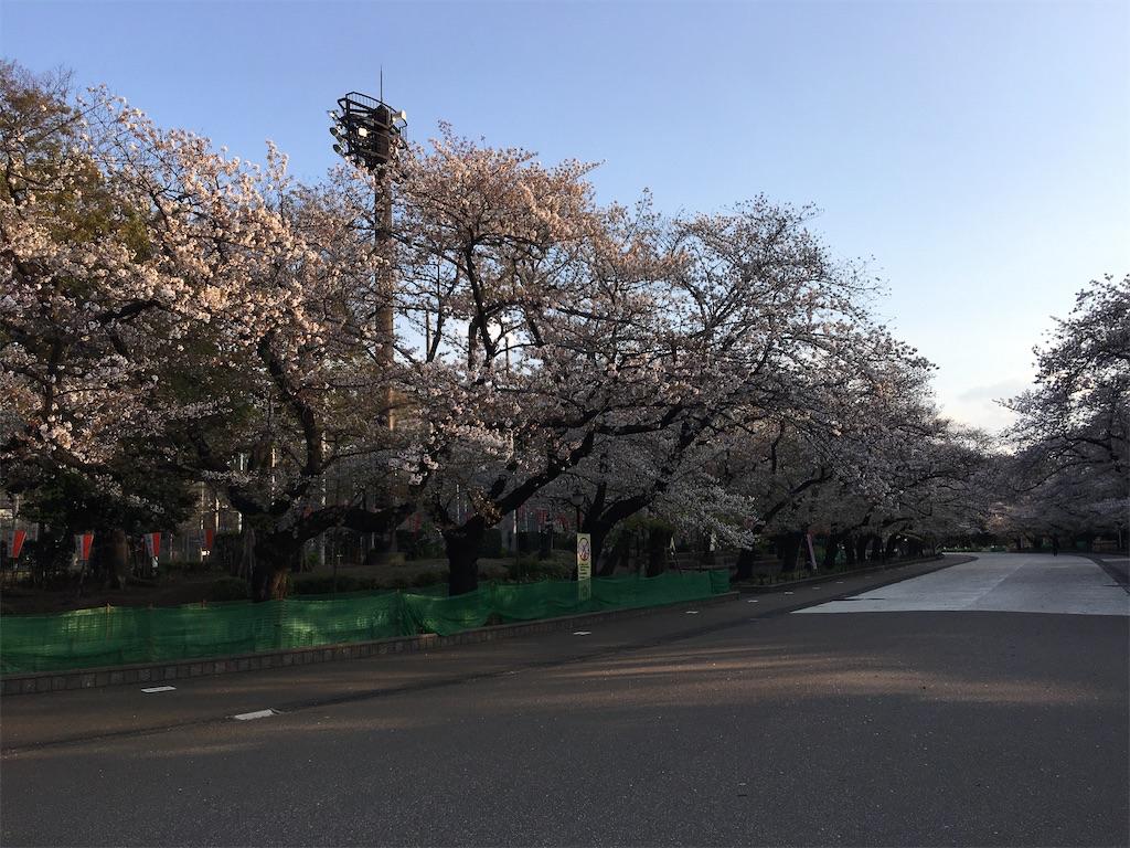 f:id:TokuheiKumagai:20200402193729j:image