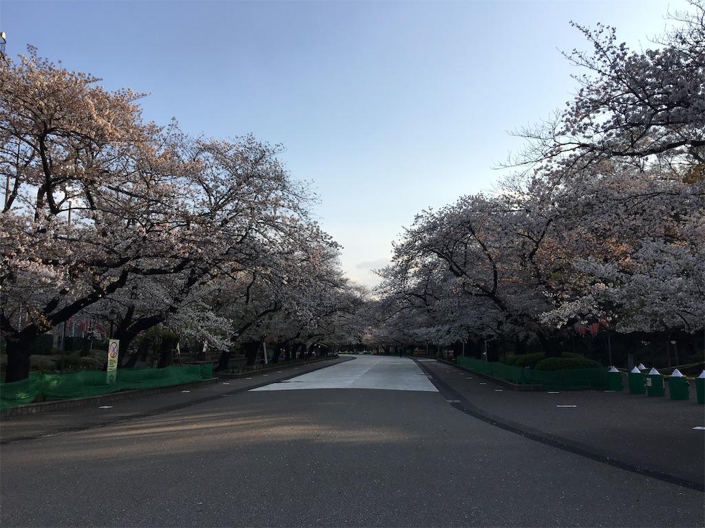 f:id:TokuheiKumagai:20200402193920j:image