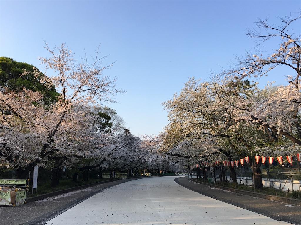 f:id:TokuheiKumagai:20200402193932j:image