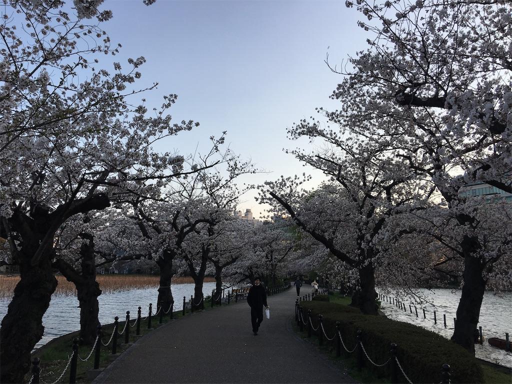 f:id:TokuheiKumagai:20200402193936j:image