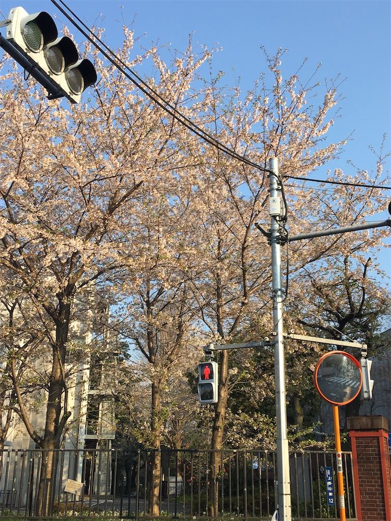 f:id:TokuheiKumagai:20200402193941j:image