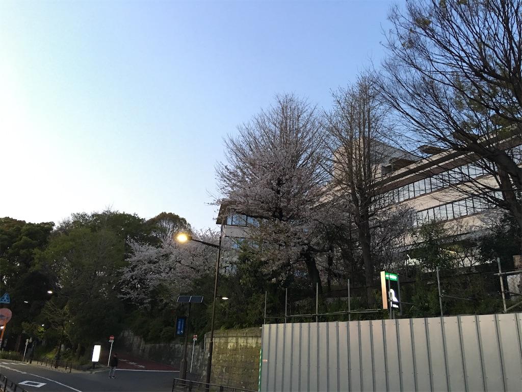 f:id:TokuheiKumagai:20200402193949j:image