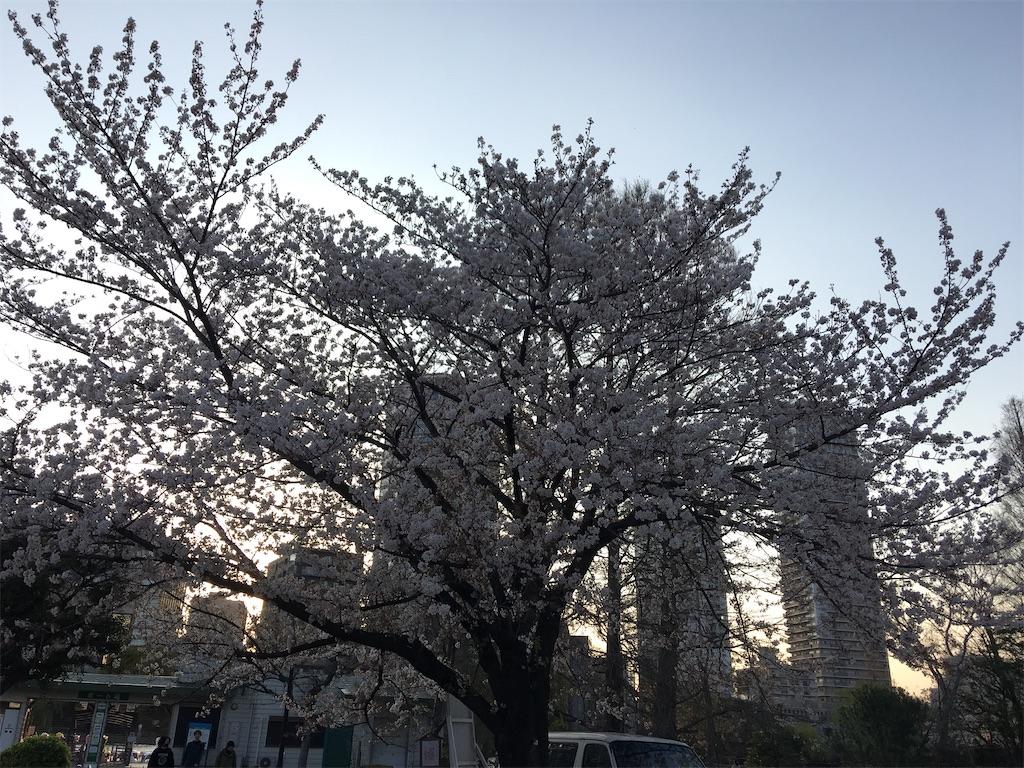 f:id:TokuheiKumagai:20200402193957j:image