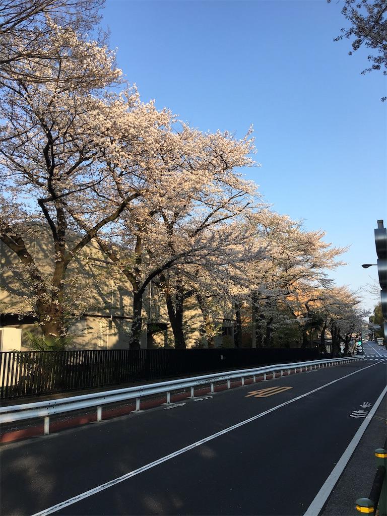 f:id:TokuheiKumagai:20200402194033j:image
