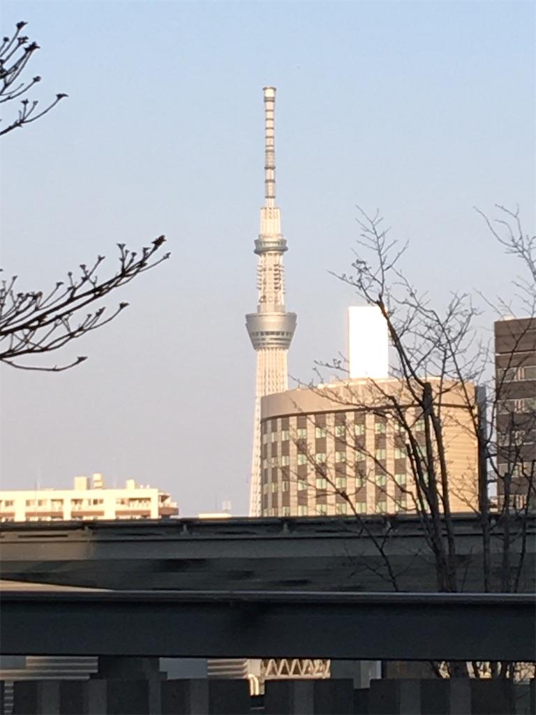 f:id:TokuheiKumagai:20200402194050j:image