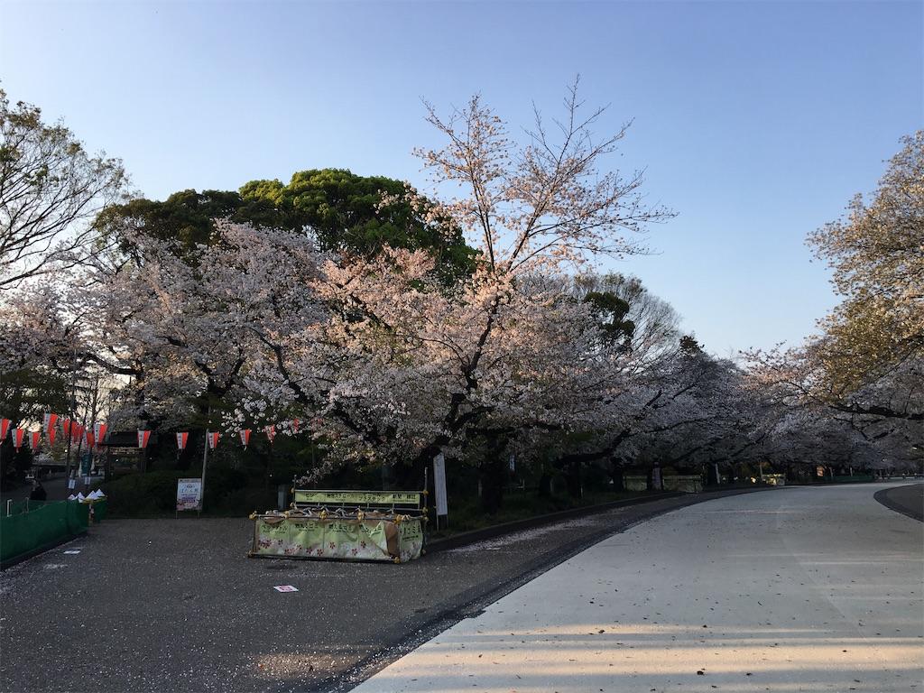 f:id:TokuheiKumagai:20200402194054j:image