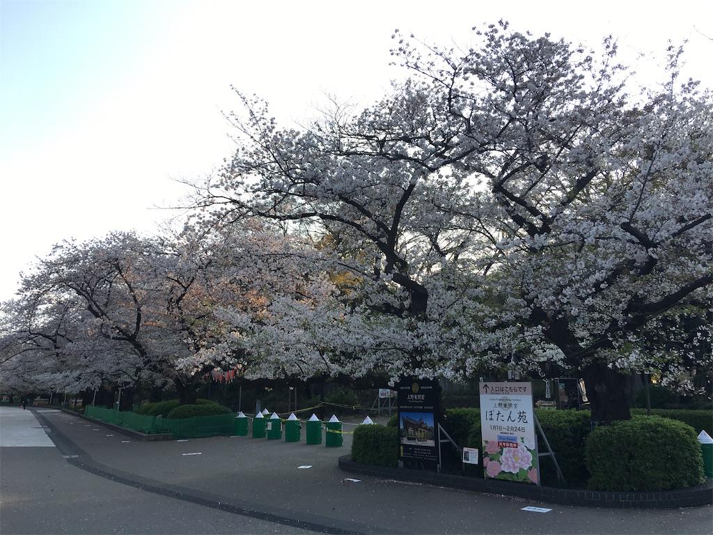 f:id:TokuheiKumagai:20200402194058j:image
