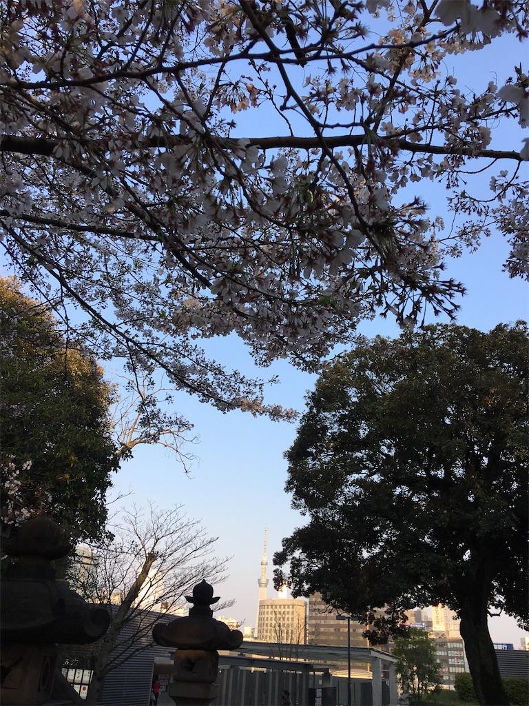 f:id:TokuheiKumagai:20200402194121j:image