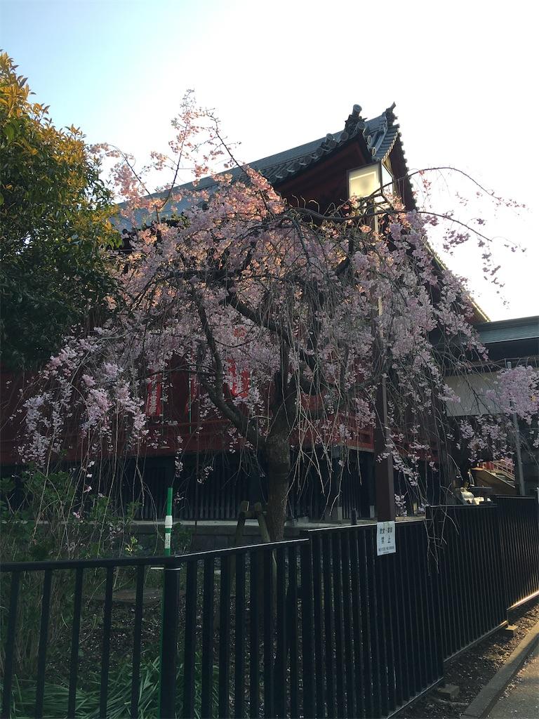 f:id:TokuheiKumagai:20200402194124j:image