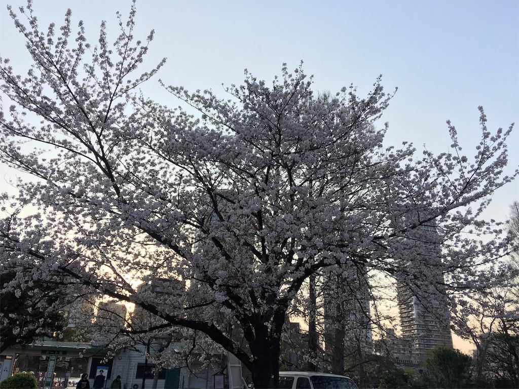 f:id:TokuheiKumagai:20200402194144j:image