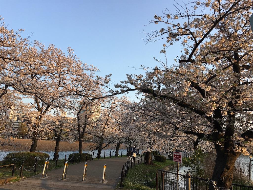 f:id:TokuheiKumagai:20200402194148j:image